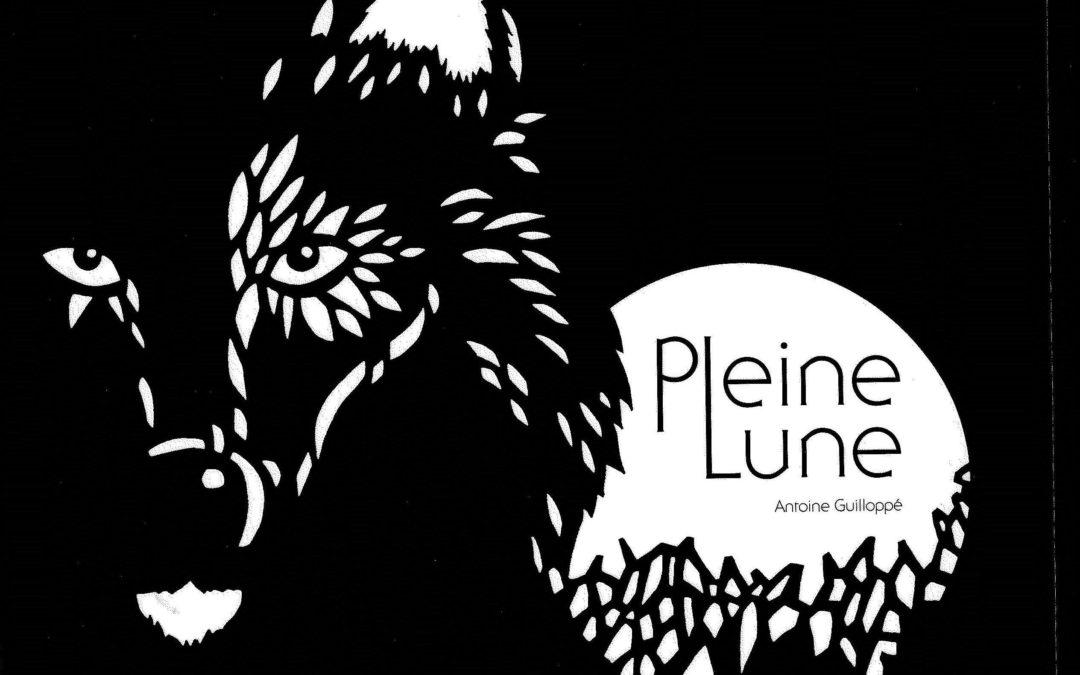 Pleine lune (Antoine Guilloppé)