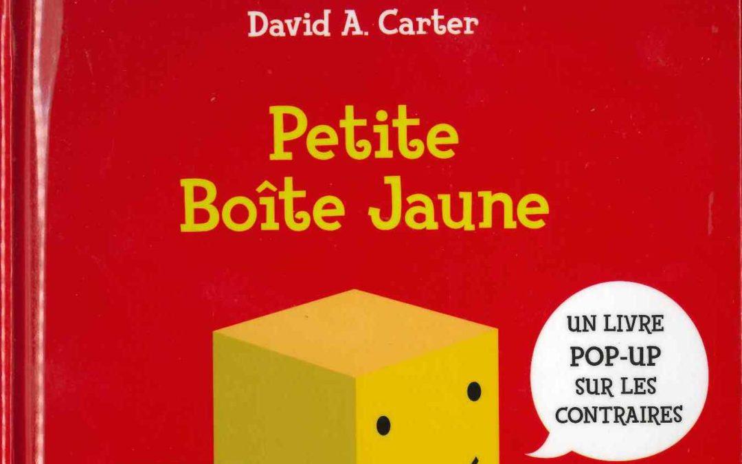 La petite boîte jaune (David A. Carter)
