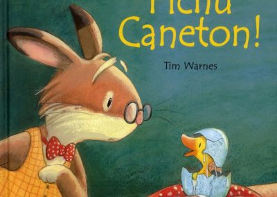 Fichu Caneton (Steve Smallman)