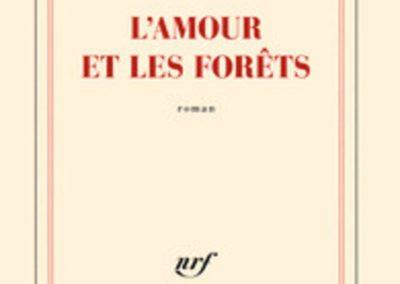 L'amour et les forêts (Eric Reinhardt)
