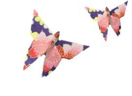 Balade contée autour des Origamis